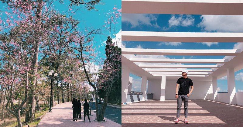 Trường Đại học Đà Lạt