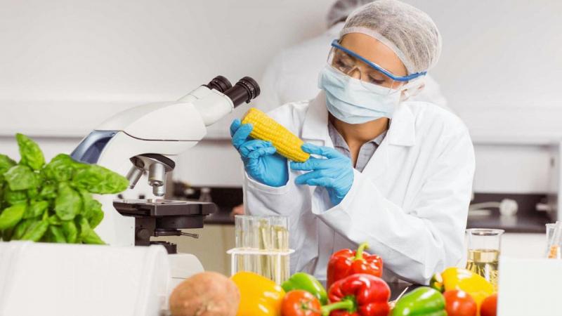 Top 6 Trường Đại học đào tạo ngành Công nghệ thực phẩm tại TP.HCM tốt nhất hiện nay