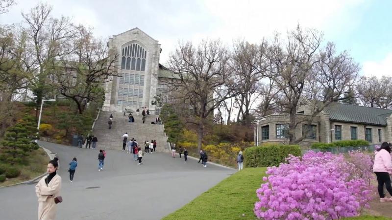 Trường Đại học Ewha