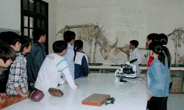Sinh viên theo dõi mô hình động vật