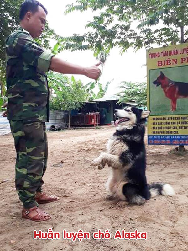 Trường Huấn Luyện chó Nghiệp Vụ Biên Phòng Sài Gòn