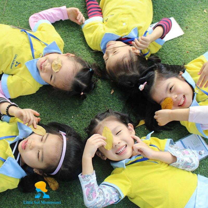 Trường Mầm non Little Sol Montessori