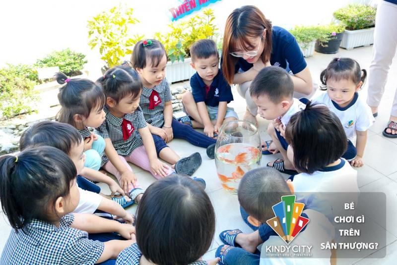Trường Mầm non Quốc tế Kindy City [