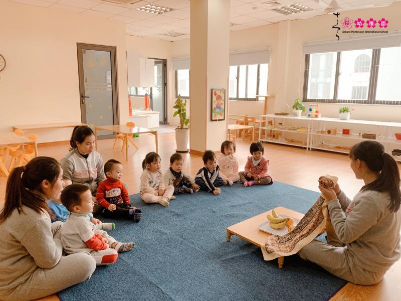 Trường mầm non Sakura Montessori Hạ Long
