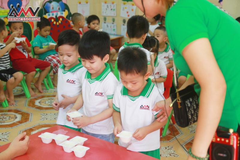 Trường Mầm non Thực Nghiệm AMV Hải Phòng