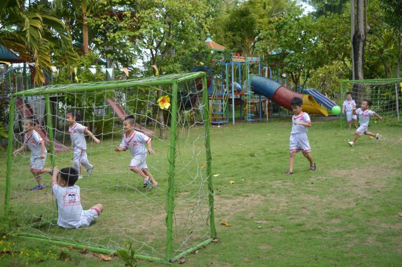 Trường Mầm Non - Tiểu Học Hạnh Phước