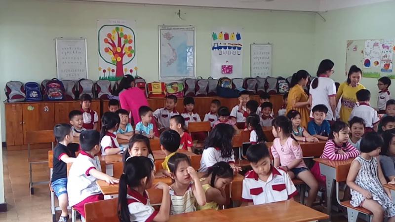 Trường Mầm non - Tiểu học Trí Tuệ Việt