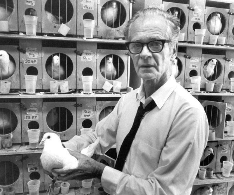Skinner - người phát triển và mở rộng trường phái tâm lý học hành vi