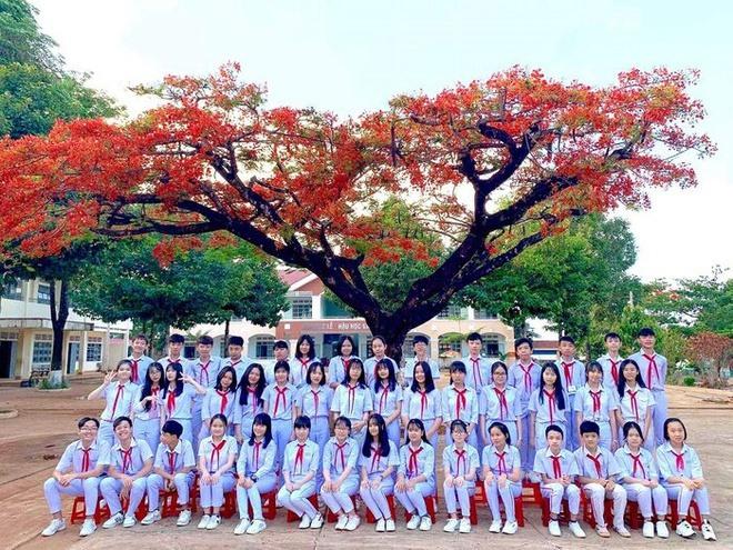 Trường THCS Trần Phú