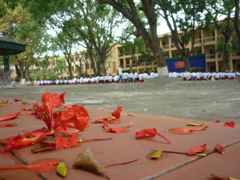 Ngôi trường của mảnh đất Bình Giang ngàn năm văn hiến