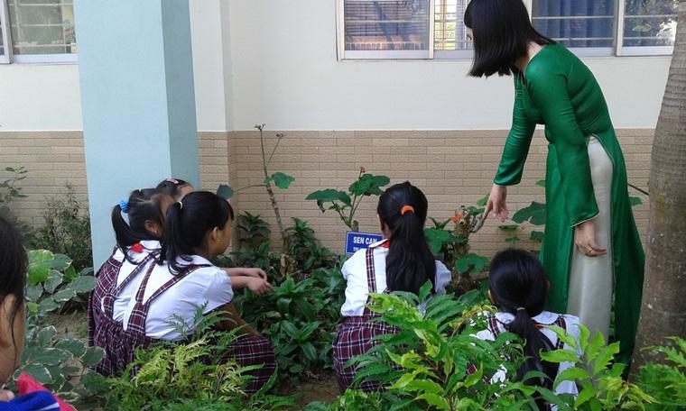 Các bạn học sinh tham quan thực tế ngoài vườn trường