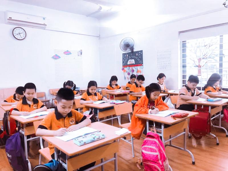 Trường Tiểu học và THCS Việt Anh