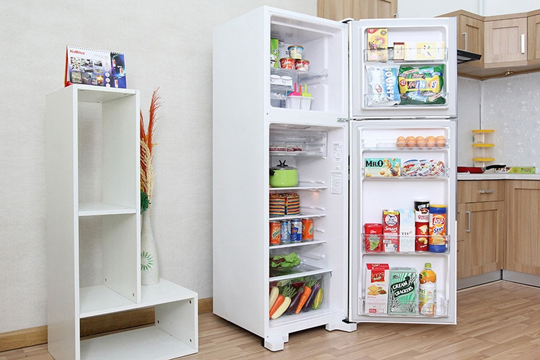 Tủ lạnh Hitachi R-T230EG1 PWH 225 lít
