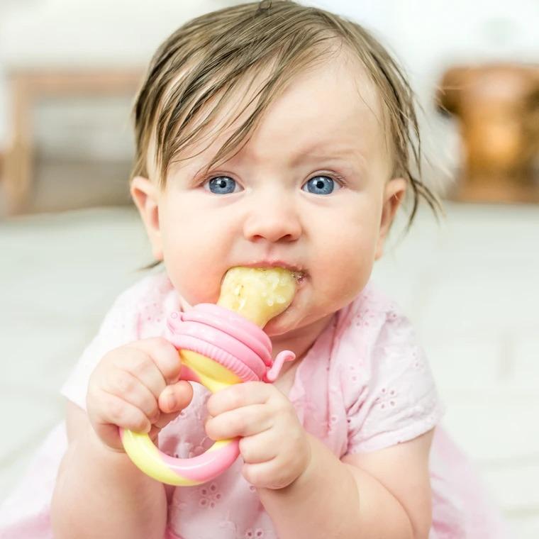 Túi nhai ăn dặm chống hóc NatureBond Baby Fruit & Food Feeder