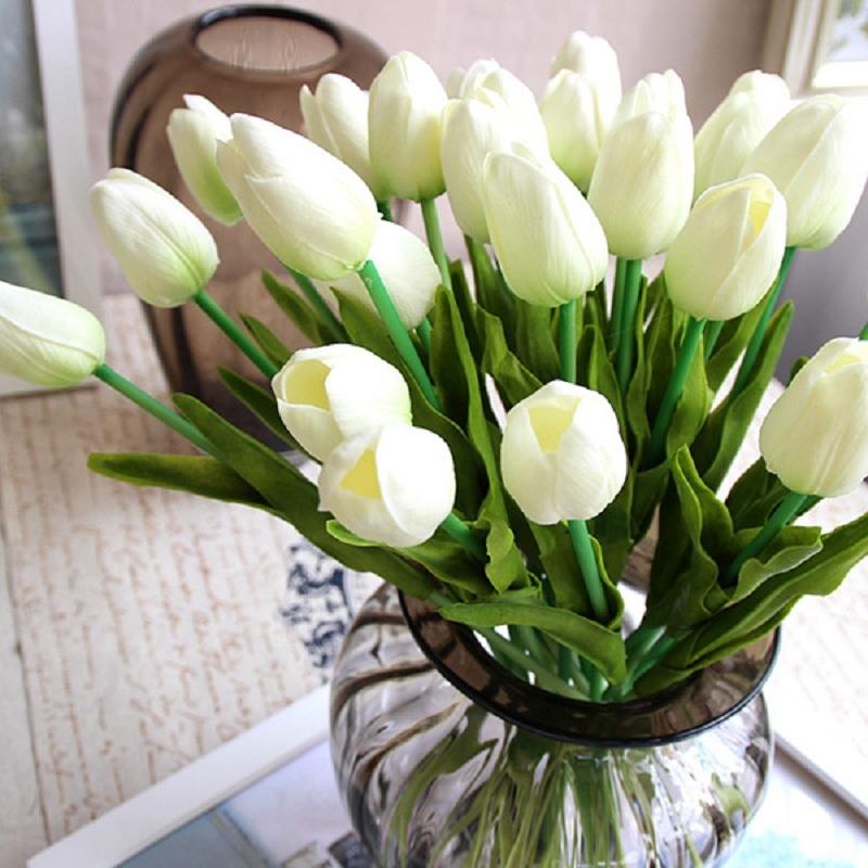 Tulip trắng
