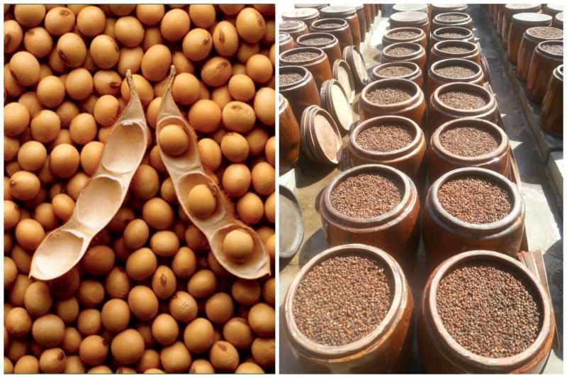 Những hạt đậu được lựa chọn kĩ lưỡng rồi đem ra phơi