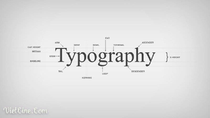 Thiết kế Typography .