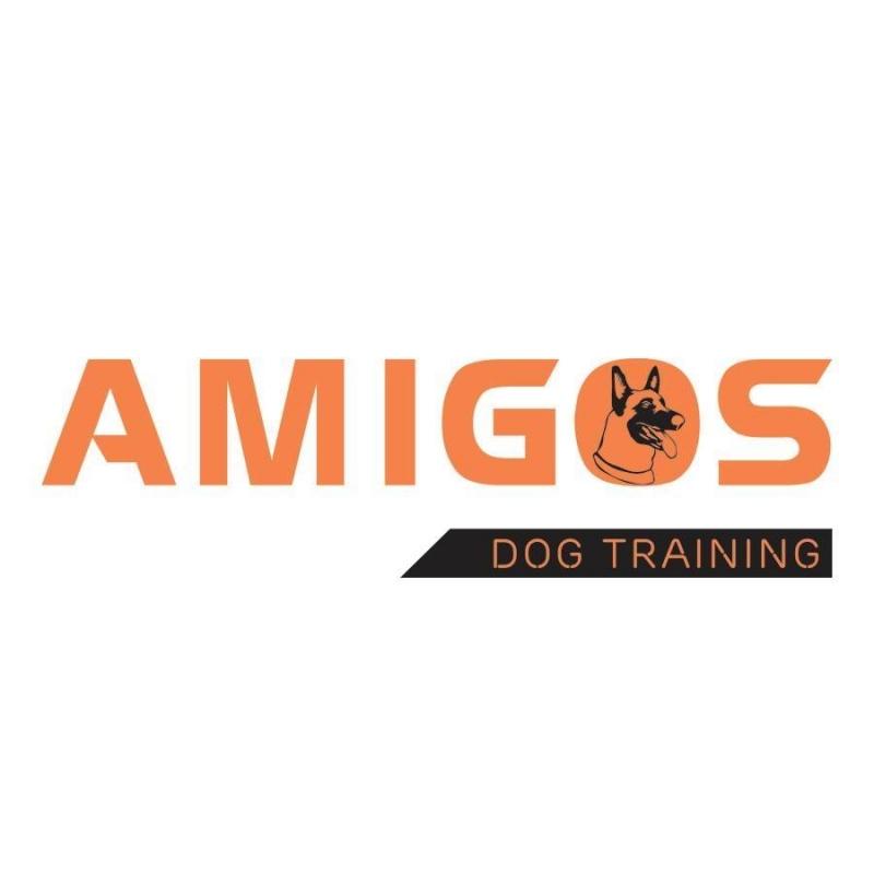 UAmigos - Dog training: Trung tâm huấn luyện chó tại Hà Nội