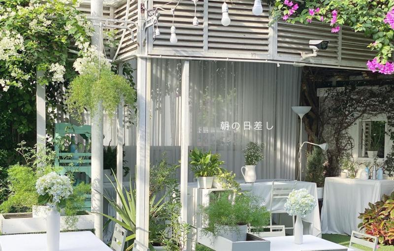 UP Garden Cafe - quán coffee thơ mộng hoà mình cùng thiên nhiên