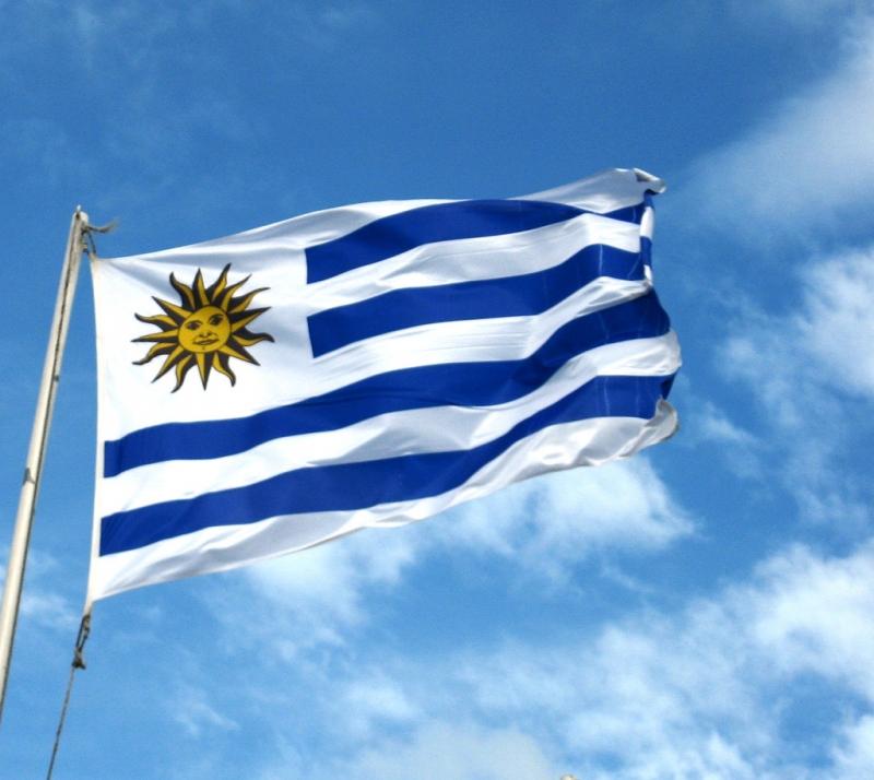 Uruguay là một tập thể đồng đều, giàu sức mạnh cũng như tinh thần đoàn kết và luôn biết cách khiến đối thủ phải e ngại
