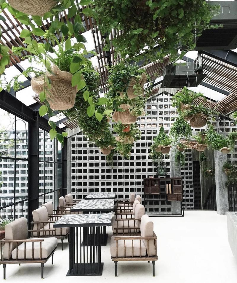 Không gian bên trong quán với trang trí rất nhiều cây xanh