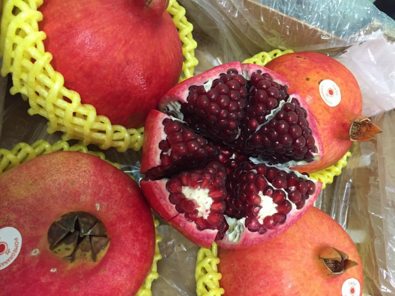 Uyen Tran Fresh Fruit
