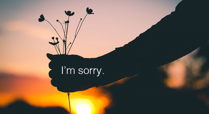 Và xin lỗi