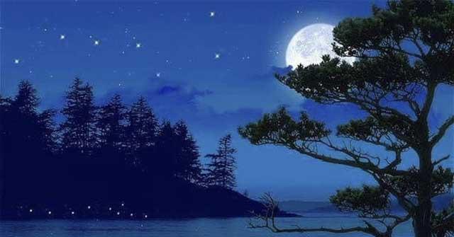 Tất cả mọi cảnh vật và âm thanh đều trộn lẫn trong ánh trăng ngời.