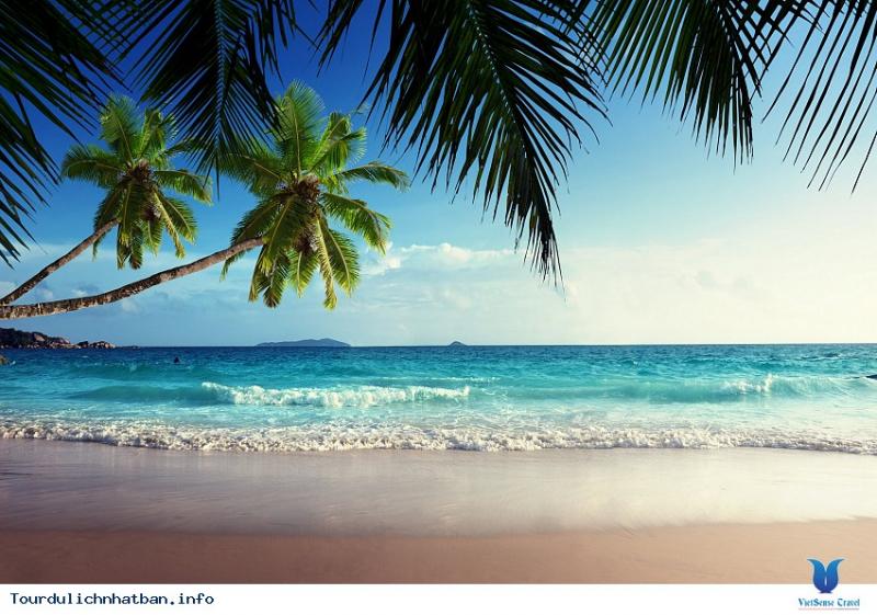 Biển Dừa Resort