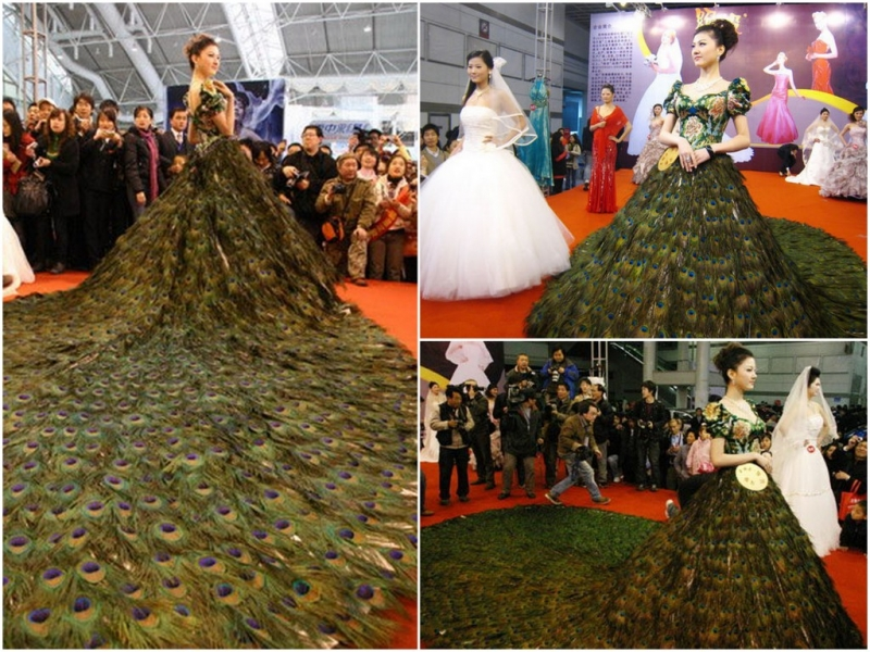 Váy lông công của Vera Wang – 33 tỷ đồng