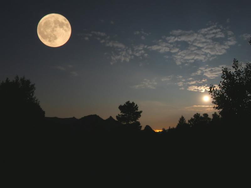 mặt trăng ló ra và bắt đầu cuộc viễn du