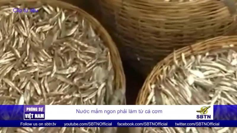 Cá cơm là một trong những nguyên liệu để sản xuất nước mắm Diêm Điền