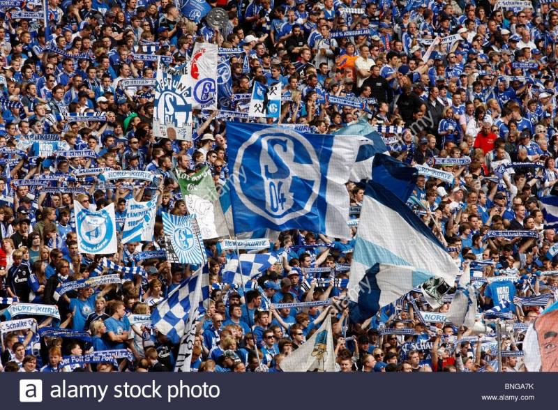 Các cổ động viên Schalke rất sôi động