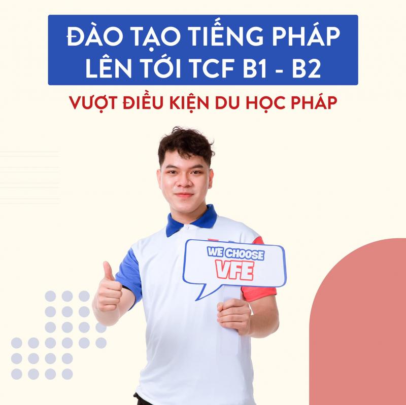 VFE - Vietnam France Exchange