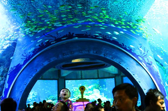 Bảo tàng Hải Dương Học