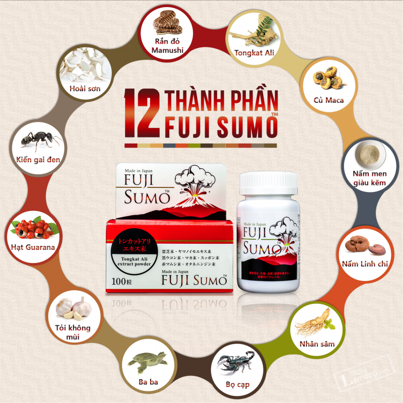 Sản phẩm có chứa thành phần chính gồm 12 dược liệu thiên nhiên quý cho tác dụng kích thích sản sinh nội tiết tố Testosterone một cách tự nhiên trong cơ thể.