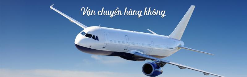 Công ty chuyên cung cấp dịch vụ vận chuyển quốc tế