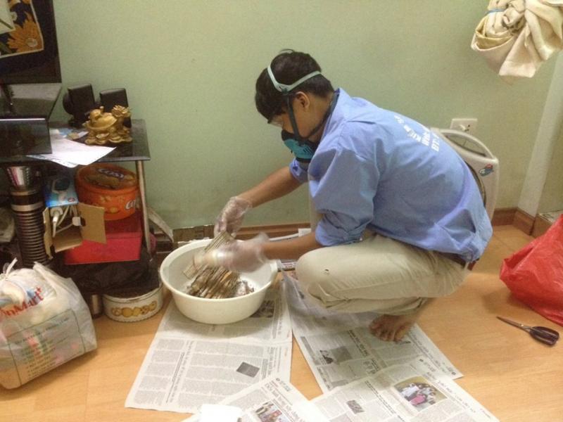 Vietnam Pest Control – Công ty TNHH Kiểm soát côn trùng Việt Nam