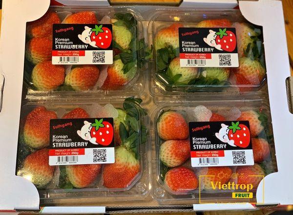 Viettropfruit là chuỗi cửa hàng trái cây sạch hàng đầu Việt Nam.