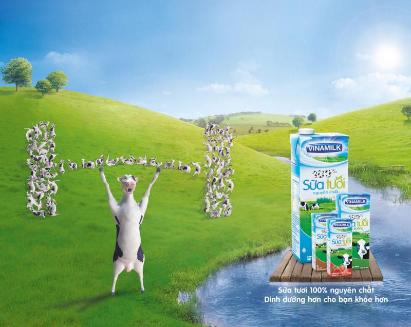 Vinamilk hiện là doanh nghiệp hàng đầu của ngành công nghiệp chế biến sữa
