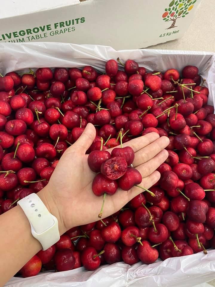 Vinfruits