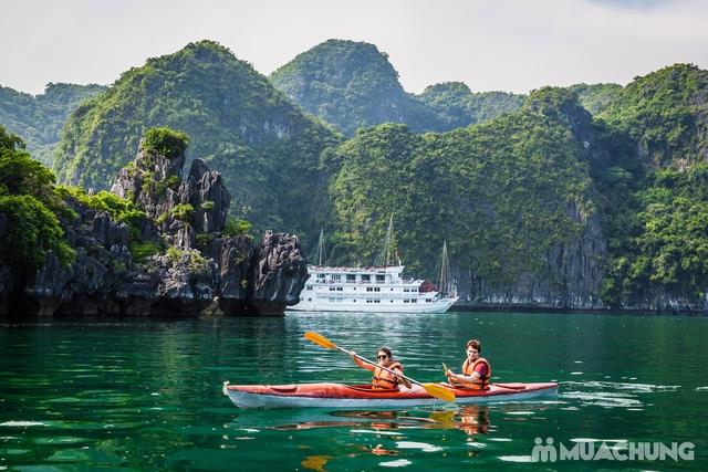 các cặp đôi trèo thuyền trên vịnh