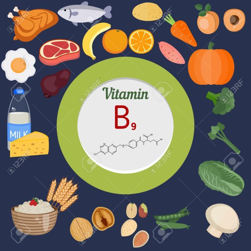 Nhóm thực phẩm có chứa Vitamin B9