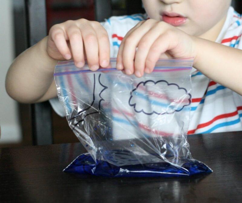 Vòng tuần hoàn nước trong túi bóng