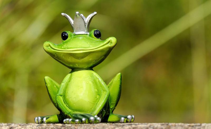Vua ếch