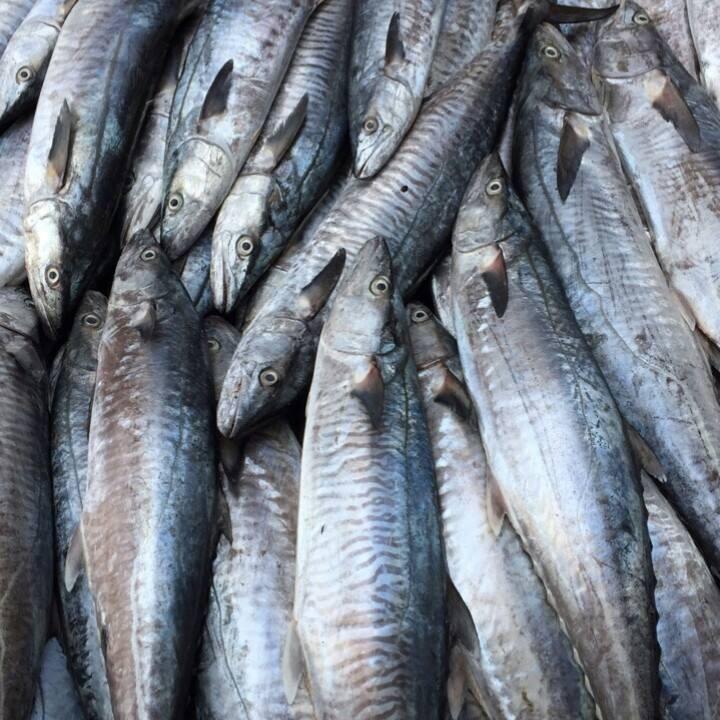 Vựa hải sản Hoàng Mai