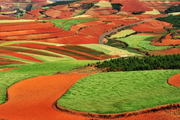 cánh đồng đỏ Dongchuan, nơi được xem là một Sao Hỏa trên Trái Đất. Nơi đây hứa hẹn mang đến cho bạn một hành trình khám phá vô cùng hấp dẫn.