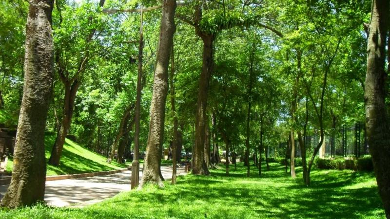 Vườn Bách Thảo