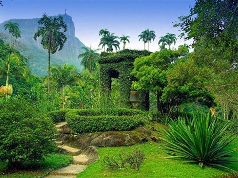 Vườn bách thảo Jardim Botnico, ở Rio de Janeiro, Brazil