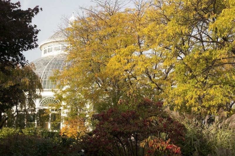 Vườn bách thảo New York